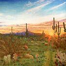 Pima County Sunset by Scott  Nordstrom