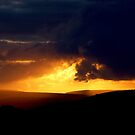 Norland Sunset 1 by Andy Beattie