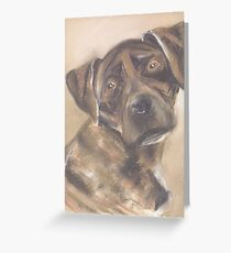 Cinder the Florida Cur Greeting Card