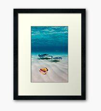 Two stingrays & a shell went into a sandbar... Framed Print