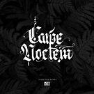 Carpe Noctem - Seize the Night von idorucreactive