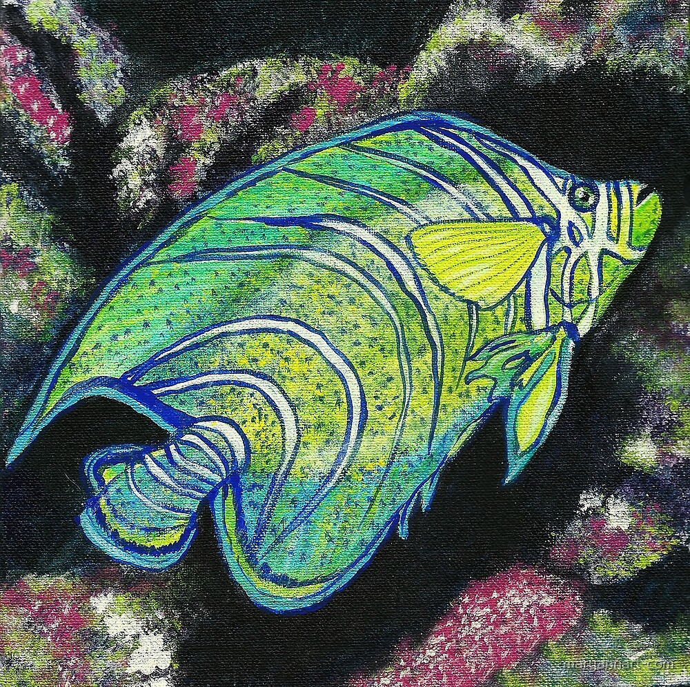 Tropical Fish by maryannart-com