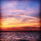 Red Sky over Charleston by Mandi  Ruch
