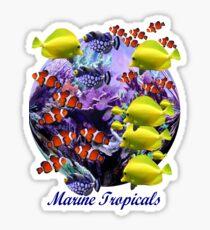 Marine Tropical Fish Sticker