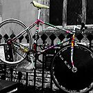 Rainbow Bike. by Ruth  Jones