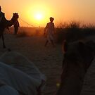 Camels at the dusk... by ShootingSardar