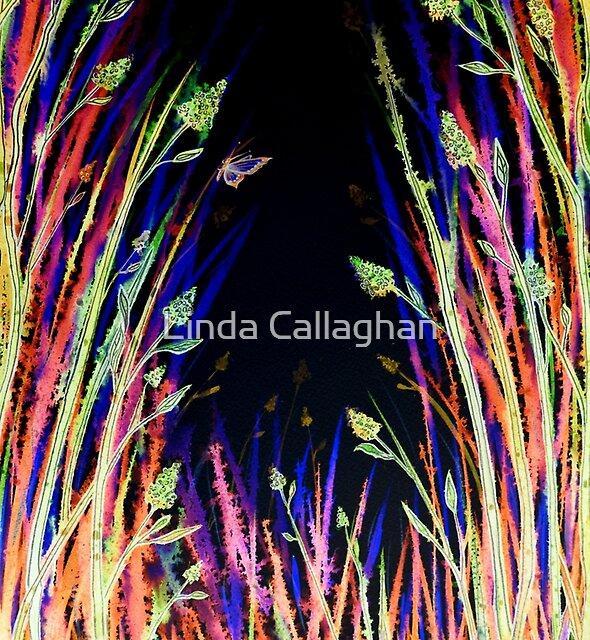 Rainbow Flowers by Linda Callaghan