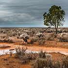Scenery Mungo NP by Jessy Willemse
