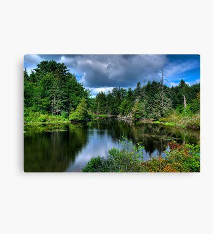 Maine - Lake  Canvas Print