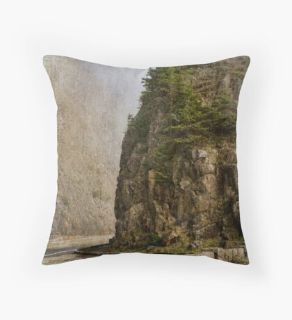 The Past Prevails Throw Pillow