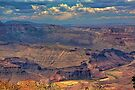 Colorado River by Bill Wetmore