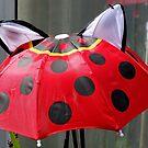 Ladybird Umbrella by AnnDixon
