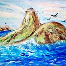 Flying Over the Rocks by Mary Sedici