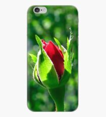 First Day Of My Small Red Rose iPhone Case