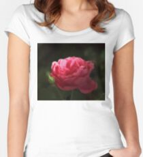 Soft Red Rose In The Evening Light Women's Fitted Scoop T-Shirt