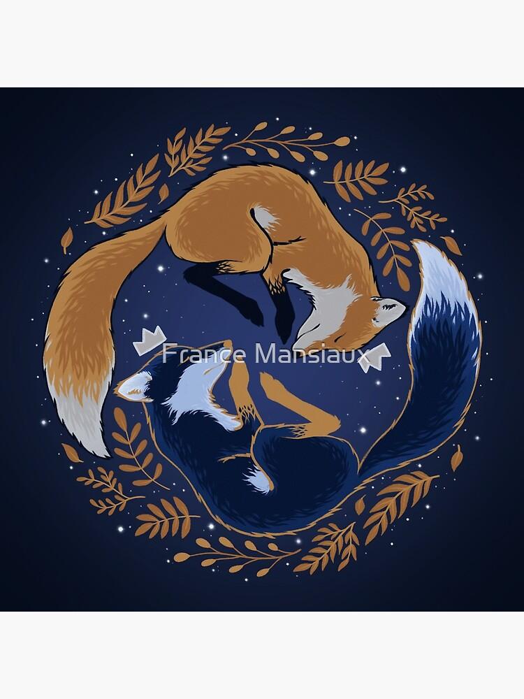 Nachtfüchse von FranceMSX