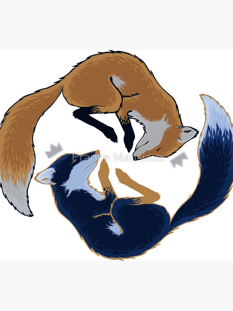 Night foxes by FranceMSX