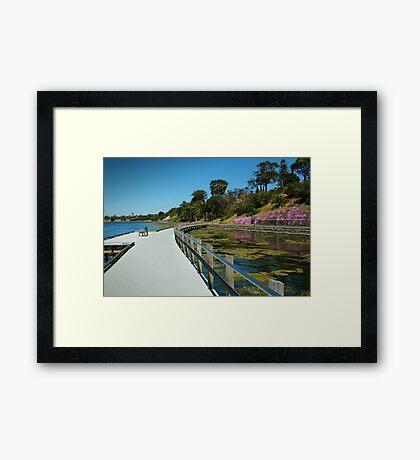 Rippleside Board Walk, Geelong Framed Print
