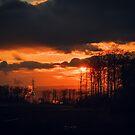 Sunset by Maurice Jelinski