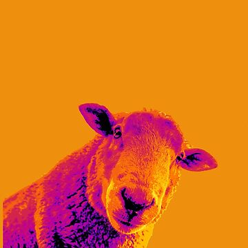 Sheepish by miniverdesigns