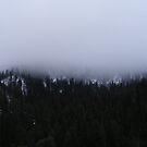 Foggy Hills by NancyC