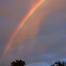 Tropical Rainbow by Susanne Van Hulst