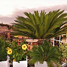 My Roman View by Fara
