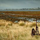 Beacon Point, view to Queenscliff by Joe Mortelliti