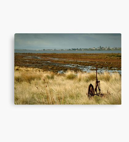 Beacon Point, view to Queenscliff Canvas Print