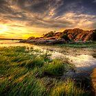 Tall Grass Sunset by Bob Larson