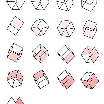 Exodus Cube Logo by chngalexa