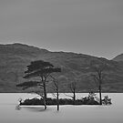 Loch Assynt, Night - black and white by ShinyPhoto