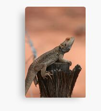 Perched dragon Canvas Print
