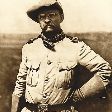 Colonel Theodore Roosevelt by warishellstore