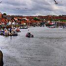 Whitby Marina by Tom Gomez