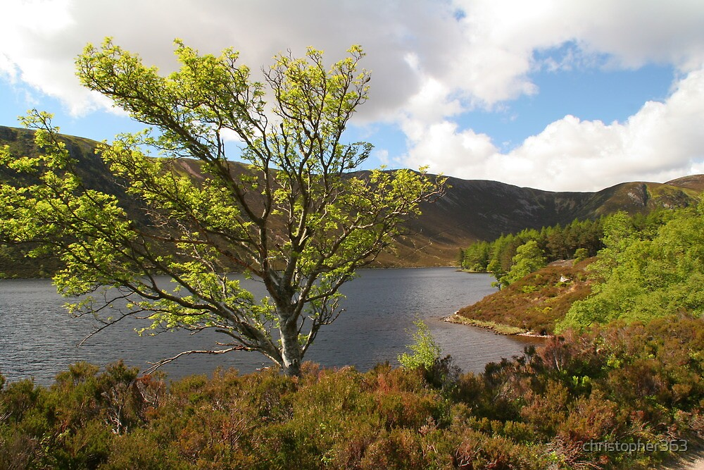 Loch Muick in Spring time by christopher363