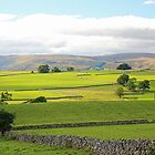 English Countryside - Cumbria, England by Marilyn Harris