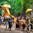 Balinese cremation ceremony 3 by Adri  Padmos