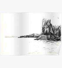 Farne Islands Poster