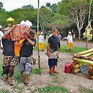 Balinese cremation ceremony 4 by Adri  Padmos
