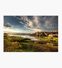 Willow Lake Green Photographic Print