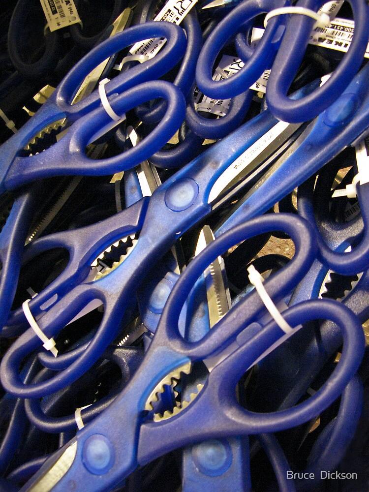 scissors by Bruce  Dickson