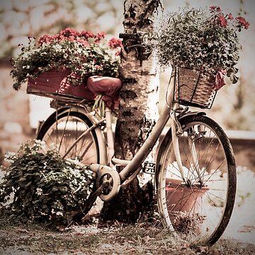 Blumenfahrrad von DavJen