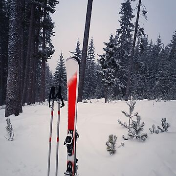 Pair of skis by psychoshadow