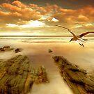 Soft Sunrise on the Beach 4 by Carlos Casamayor