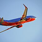 Southwest by Bob Hortman