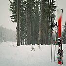 ski equipment by psychoshadow