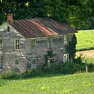 Vines Overtake The Forgotten Farmhouse by Gene Walls