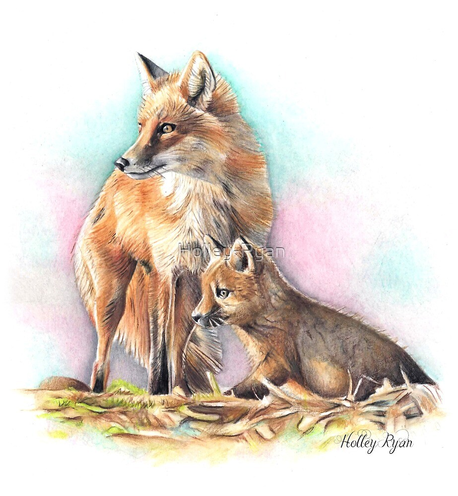 Red Foxes by Holley-Ryan