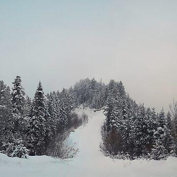 snowy hills by psychoshadow